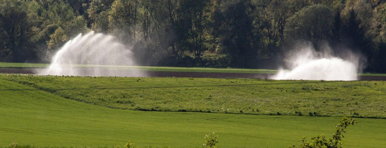 watering1
